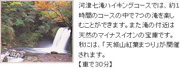 河津七滝ハイキング